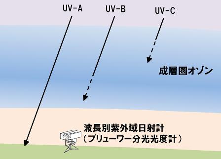 紫外線種類